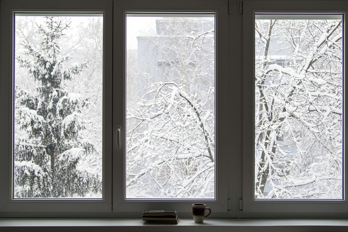 Windows At Winter
