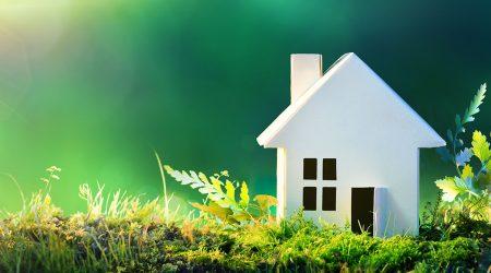 Eco-friendly Windows And Doors